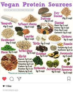 Protein sources in vegan and vegetarian diet – infographics Healthy Tips, Healthy Choices, Healthy Snacks, Healthy Eating, Healthy Sweets, Vegan Foods, Vegan Vegetarian, Vegan Recipes, Vegan Meals