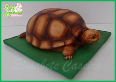 Turtle cake by Bety'Sugarland