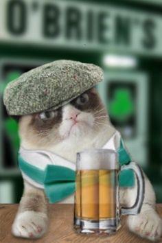 St. Patrick's day cats | Grumpy Cat St. Patrick's Day ... - PandaWhale
