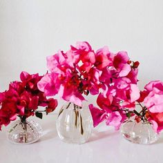 Floral Wedding Centerpieces Planning and Tips - Love It All Simple Wedding Centerpieces, Wedding Flower Arrangements, Flower Centerpieces, Wedding Decorations, Table Decorations, Centerpiece Ideas, Bougainvillea Wedding, Floral Wedding, Wedding Flowers