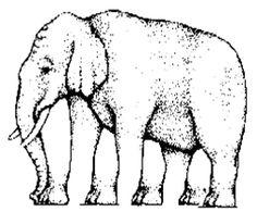 In deze tekening zie je een olifant met 4 poten, maar als je goed kijkt, dan kan je meer poten zien.
