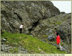 Searching for Arabis alpina in the Black Cuillins of Skye. 2008. Photo - Tom MacDonald.