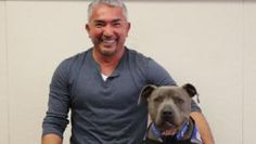 Check out all of Cesar Millan's Dog Training Books, DVDs, Dog Supplies and Articles & Video Tutorials.