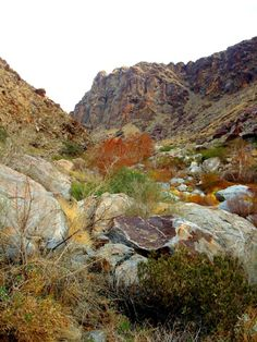 Agua Caliente Tahquitz Visitor, Palm Springs, California - The colors of Tahquitz Canyon (Palm Springs, California).