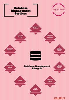 Proper database structuring and management is highly strategic for your business at all levels especially in marketing, and customer relationship management. In the time of big data boom, managing data and information has not only become intricate but next to impossible to manage and access smoothly. For More : www.calipus.com   database development company   #database   #database management   #calipus   http://www.calipus.com