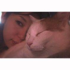今日は、お休みだから いっぱい遊ぼうねーウミーー❤︎ ・ ・ #umi#cat#catlover#son #ウミ#カリン様#家猫#ダイエット中#6歳#すぐ#スタミナ切れ#茶白#猫#モフモフ#ねこすたぐらむ#にゃんすたぐらむ#インスタキャット#愛猫#ねこあるある#ねこ日記#猫との生活#日常#みんねこ#ねこまみれ#peace#instadaily#instalike#instacat#instagood