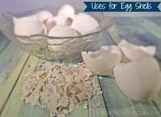 Uses for Egg Shells: Don't throw out that gold mine!