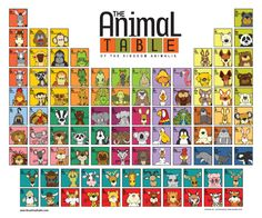The Animal Table of the Kingdom of Animalia  www.theanimaltable.com