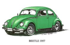 Green 1957 Volkswagon Beetle