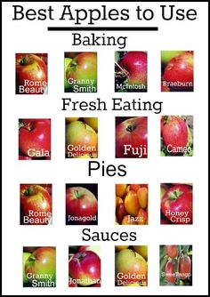"""Another Pinner wrote: """"An easy guide to the best apples to use in cooking & baking. I disagree with the Honeycrisp only under Pies though - it is the BEST one for fresh eating Do It Yourself Food, Think Food, Food Facts, Baking Tips, Apple Recipes, Fruits And Veggies, No Cook Meals, Just Desserts, Dinner Ideas"""