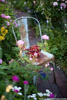 Dream Garden, Garden Art, Garden Ideas, Beautiful Gardens, Beautiful Flowers, Grandmas Garden, Flea Market Gardening, Fru Fru, Vintage Fairies