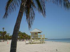 Crandon Park, Key Biscayne MIAMI Downtown Miami, Miami Florida, Florida Beaches, Miami Beach, Key Biscayne Florida, Crandon Park, Hot And Humid, Paradise Found, Coral Gables