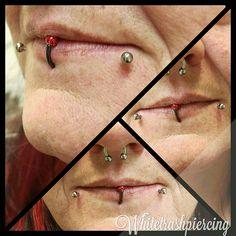 「Fresh labret piercings!  With 14g titanium labret.  #bywhitetrashpiercing #Whitetrashpiercing #thewhitetrashtattoocompany #twttc #piercing #lippiercing…」