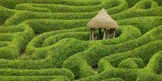 10 meravigliosi giardini celtici per ritrovare pace e armonia interiore (FOTO e VIDEO)