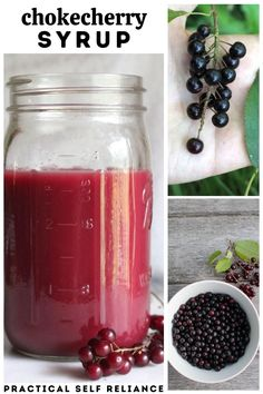 Fruit Preserves, Fruit Jam, Fruit Syrup Recipe, Syrup Recipes, Chokecherry Syrup, Canning Peaches, Canning Vegetables, Cherry Wine, Wild Edibles