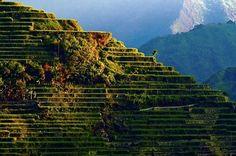Rice Terraces of the Philippine Cordilleras (UNESCO, 1000 Places) - Banuae, Luzon, Philippines