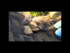 Shingles leak roof repair