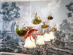Contemporary | Dining Rooms | Melanie Coddington : Designer Portfolio : HGTV - Home & Garden Television