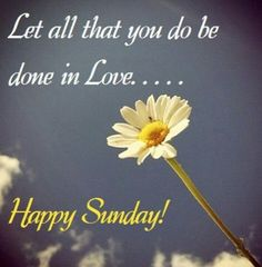 ≈ Let all that you do be done in Love ...... Happy Sunday To Everyone .... Have a blessed day with Peace and Harmony .... Thank you ... Mary Xo :D ≈