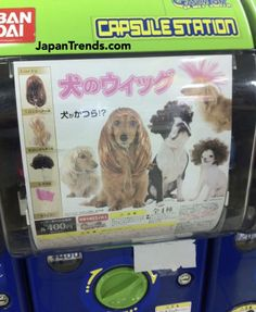 Dog Wig vending machine.  As crazy as this looks, I used to live in Japan and am not surprised at all that it exists!