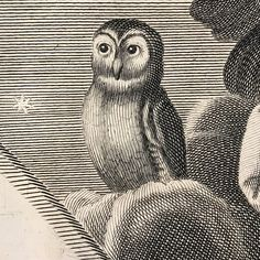 Giovanni Girolamo Frezza (1704)