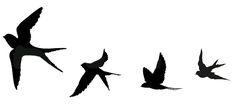 59 Ideas For Feather Bird Tattoo Wrist Swallows Bird Tattoo Foot, Bird Tattoo Ribs, Swallow Bird Tattoos, Simple Bird Tattoo, Feather With Birds Tattoo, Little Bird Tattoos, Black Bird Tattoo, Feather Tattoos, Nature Tattoos