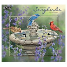 Songbirds 2017 Calendar (Deluxe) (Paperback)