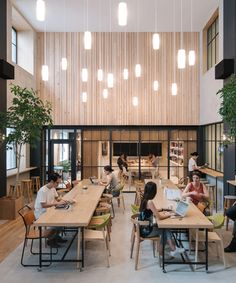airbnb's tokyo office provides nature-themed respite from hectic city life
