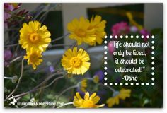 "Celebrate Life - ""Life should not only be lived, it should be celebrated!"" - Osho.  Visit www.tootsweet4two.com for more inspirational and motivational quotes."