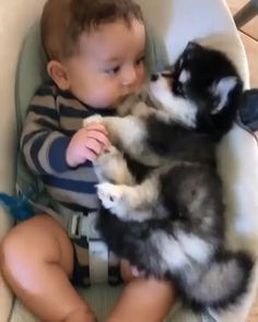 Cute Funny Babies, Funny Kids, Funny Cute, Cute Kids, Adorable Dogs, Baby Animals Super Cute, Cute Little Animals, Cute Funny Animals, Humorous Animals