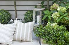 Leopoldina Haynes has used some very simple but lovely decorative touches - Here Striped + Check cushions + a muted coloured Lantern. All of these layers provide comfort to the courtyard garden.