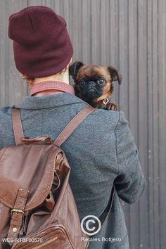 Pes koukající muži přes rameno Dog looking over man's shoulder Sling Backpack, Dog Lovers, Backpacks, Shoulder, Dogs, Pet Dogs, Backpack, Doggies, Backpacker