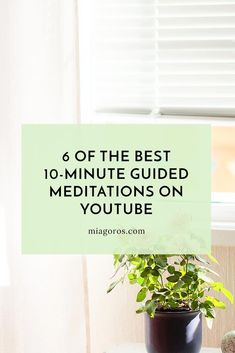 YouTube has a considerable amount of 10-minute guided mediation videos to search through and enjoy! Here are the 6 best...