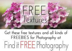Free Photoshop Texture Set!  Find these and hundreds more Photography Freebie Listings at Flourish!