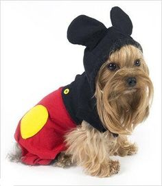 "Mouse ""Mickey"" Costume For Dogs - Size 6 (16"" l x 20.5"" - 23.25"" g) Puppe Love  Price: 	$36.29 + $5.59 shipping    http://www.amazon.com/dp/B009LSR63G/ref=cm_sw_r_pi_dp_o5ooub06ZWHS5"
