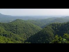 Is a Cabin in the Smoky Mountains Right for Your Pigeon Forge or Gatlinburg Vacation? Watch This Video to Find Out!