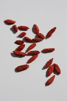 How to Grow Goji Berries From Seeds
