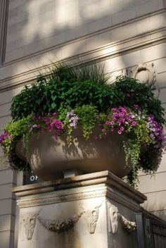 Tiny gardens of mixed flowering plants in urns, my favorite.