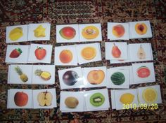 Whole and half fruits -pdf link---Look for this---  Montessoriforeveryone---right under the picture and click on the link and it will take you to the free printable. Web page not in English.