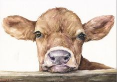 This Little cute Calf cow baby portrait Print of the Original Watercolor Love Painting art cute Sweet painting Decor sweet pink farm animal is just one of the custom, handmade pieces you'll find in our giclée shops. Animal Paintings, Animal Drawings, Art Drawings, Painting & Drawing, Watercolor Paintings, Watercolor Artists, Oil Paintings, Cow Paintings On Canvas, Painting Lessons