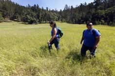 Native American youth assist with Black Elk Wilderness restoration    good project for scouys and classes