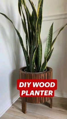 Diy Home Crafts, Fun Crafts, Diy Wall Decor, Diy Home Decor, Tree Branch Decor, Diy Organisation, Wood Planters, Boho Diy, Diy Desk