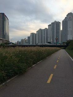 Bundang Apartments and Condominiums. Jeongja Cafe Street,  South Korea