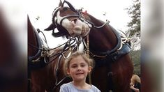 Funny Animals Photobombs Don't Get Much Better Than This Little Girl And A Smiling Horse