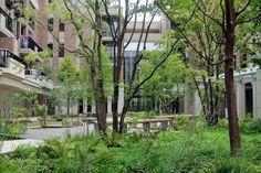 home - Dan Pearson Studio Courtyard Landscaping, Garden Paving, Tropical Landscaping, Landscaping Plants, Forest Landscape, Urban Landscape, Landscape Design, Landscape Concept, Landscape Architecture