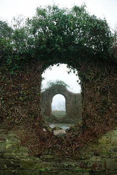Magical...Irish Window- Kinsale, Ireland - what a great garden idea for a formal garden.
