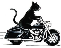 Custom Pet Caricature - Motorcycle Art - Pet Portrait - Cartoon Motorcycle - Harley Davidson Art - Dog - Cat - Animals - 8x10