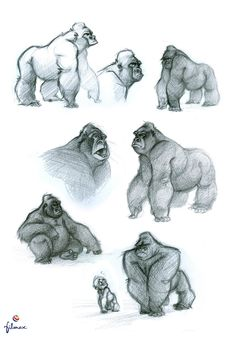 Carolina Cuenca Find more at https://www.facebook.com/CharacterDesignReferences if you ar looking for: #art #character #design #model #sheet #illustration #best #concept #animation #drawing #archive #library #reference #anatomy #traditional #draw #development #artist #animal #animals #apes