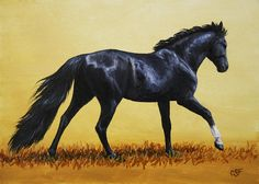 Horse Painting - Black Beauty Painting
