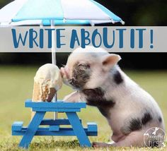 Write About It! Writing Prompts – Traci Clausen – Engaging Teaching Grab some writing inspiration with Write About It! Encourage creative thinking, inspired paragraphs and writer engagement. Picture Writing Prompts, Writing Images, Writing Pictures, Writing Prompts For Kids, Writing Strategies, Cool Writing, Writing Lessons, Kids Writing, Writing Skills